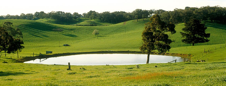 A farm dam in green rolling hills