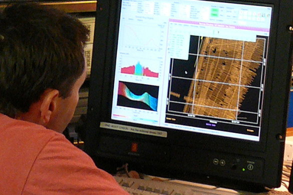 Researcher at a computer monitor