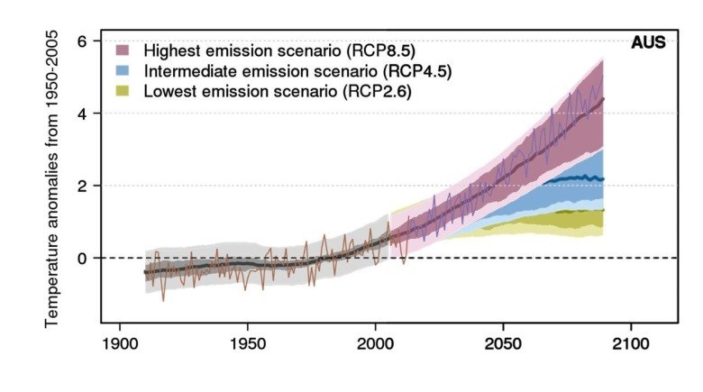 Australian mean annual surface warming relative to the 1950–2005 average in the past and for three future emissions pathways. The brown line is Bureau of Meteorology observations and the purple line is a simulation from Australia's community climate model (ACCESS).
