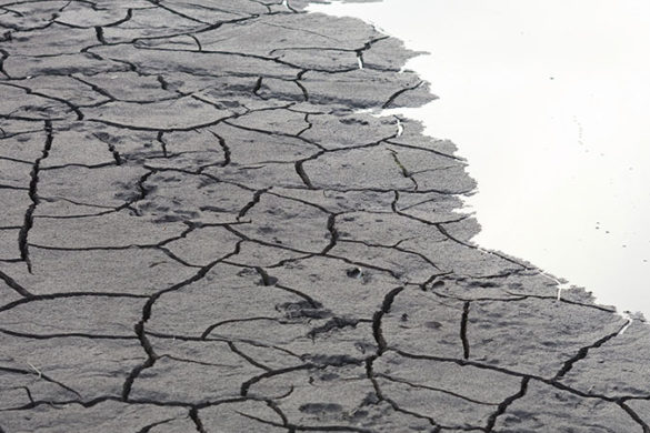 Dry cracked earth by a body of water