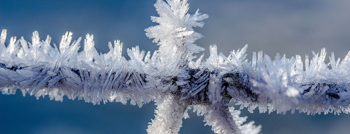 Ice crystals on wire