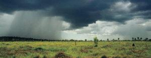 Heavy rainfall over a paddockq