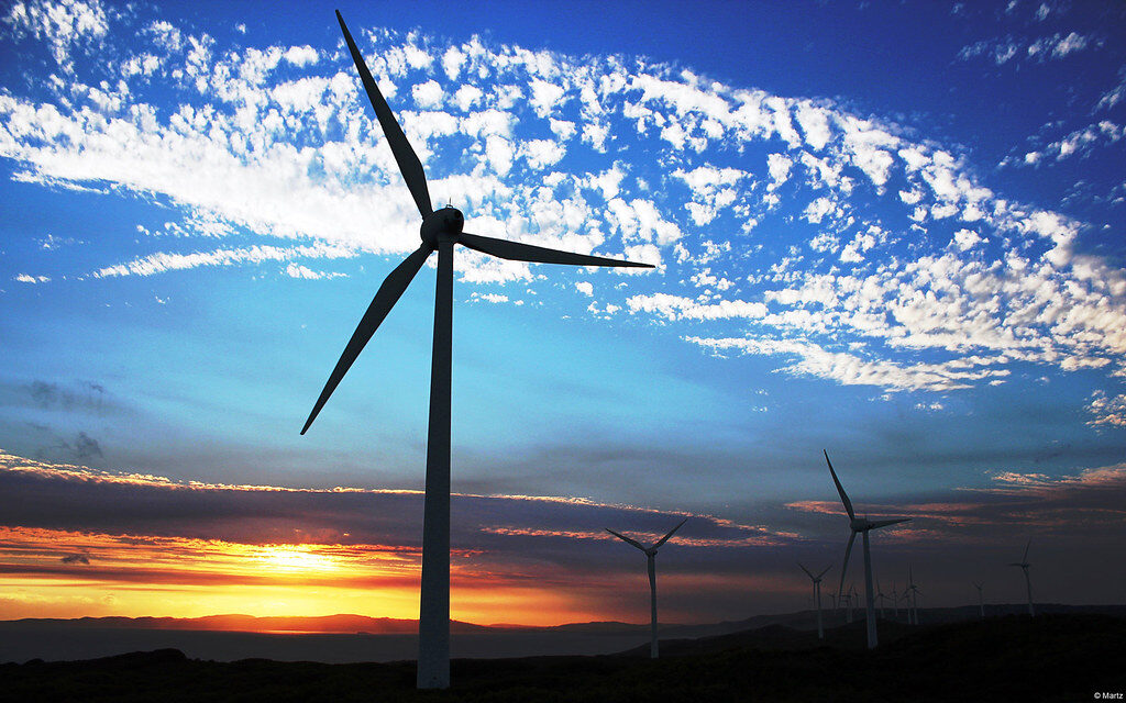 A series of windmills pictured on a flat landscape at sunset.